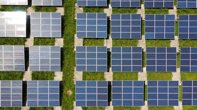The Negative Impact of Renewable Energy